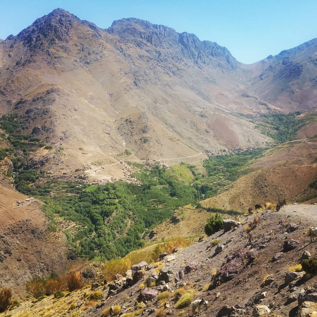 day trip to high atlas